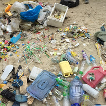 RESEARCH_Beachcleanup1.jpg
