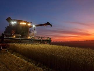 Agriculture 3.jpg