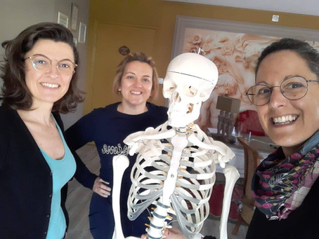 Formation Anatomie et Physiologie