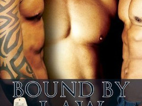 Review: Bound by Law by S.E. Jakes
