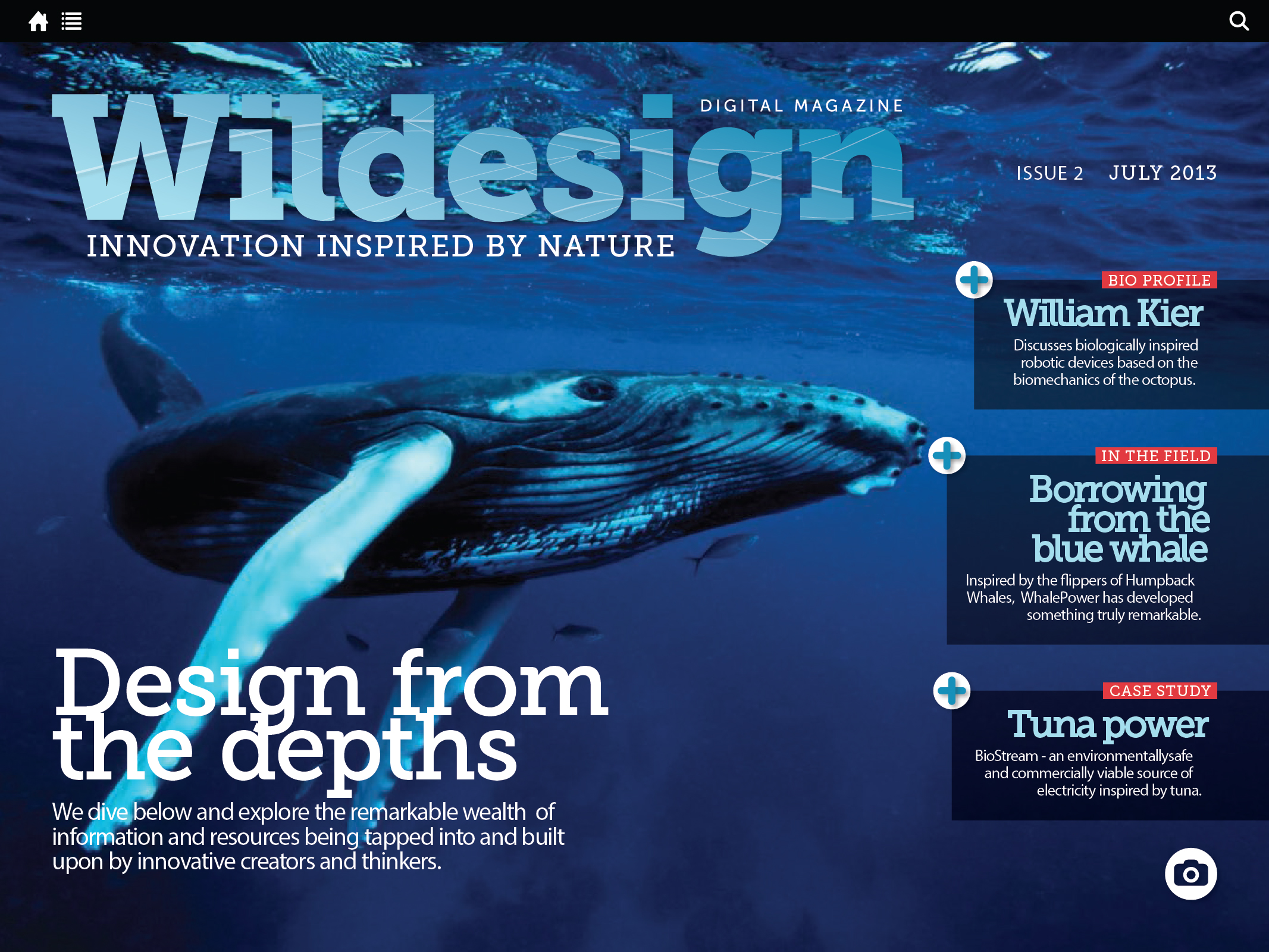 WILDESIGN