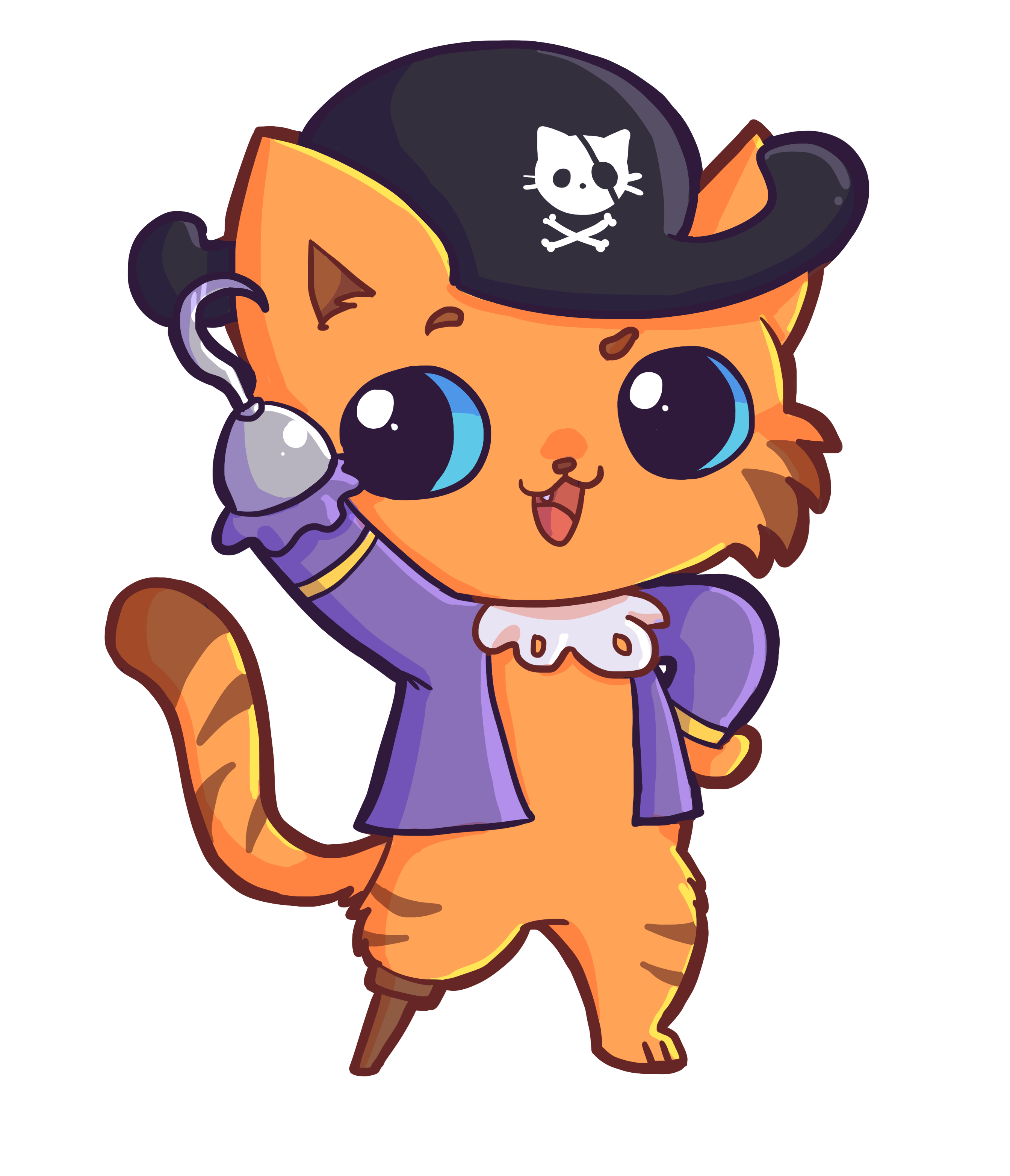 pirate_cat