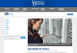 UDaily | Fascinated by fossils