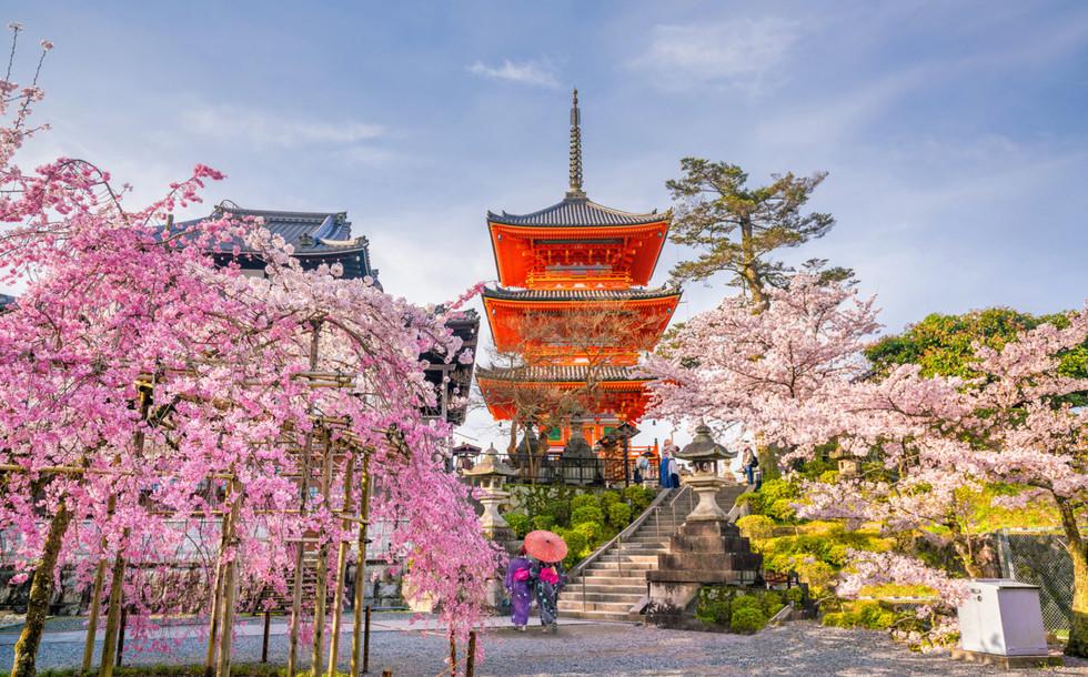 Сикоку-Япония-16.jpg