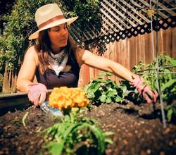 gardeningspring20_edited.jpg