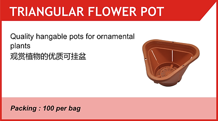 Triangular Flower Pot.png