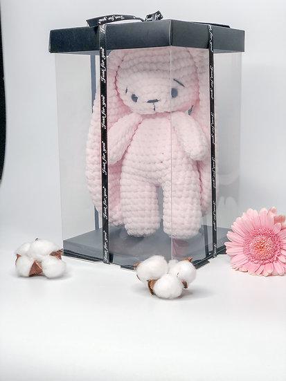 Plushie in a transparent box