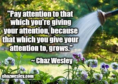 chaz quote - attention.jpg