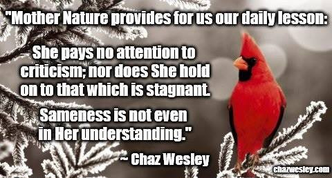 chaz quote - mother nature.jpg