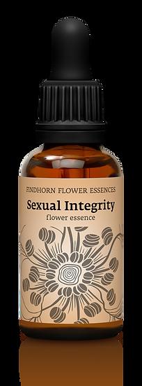 感。性系列 - Sexual Integrity 性能量整合