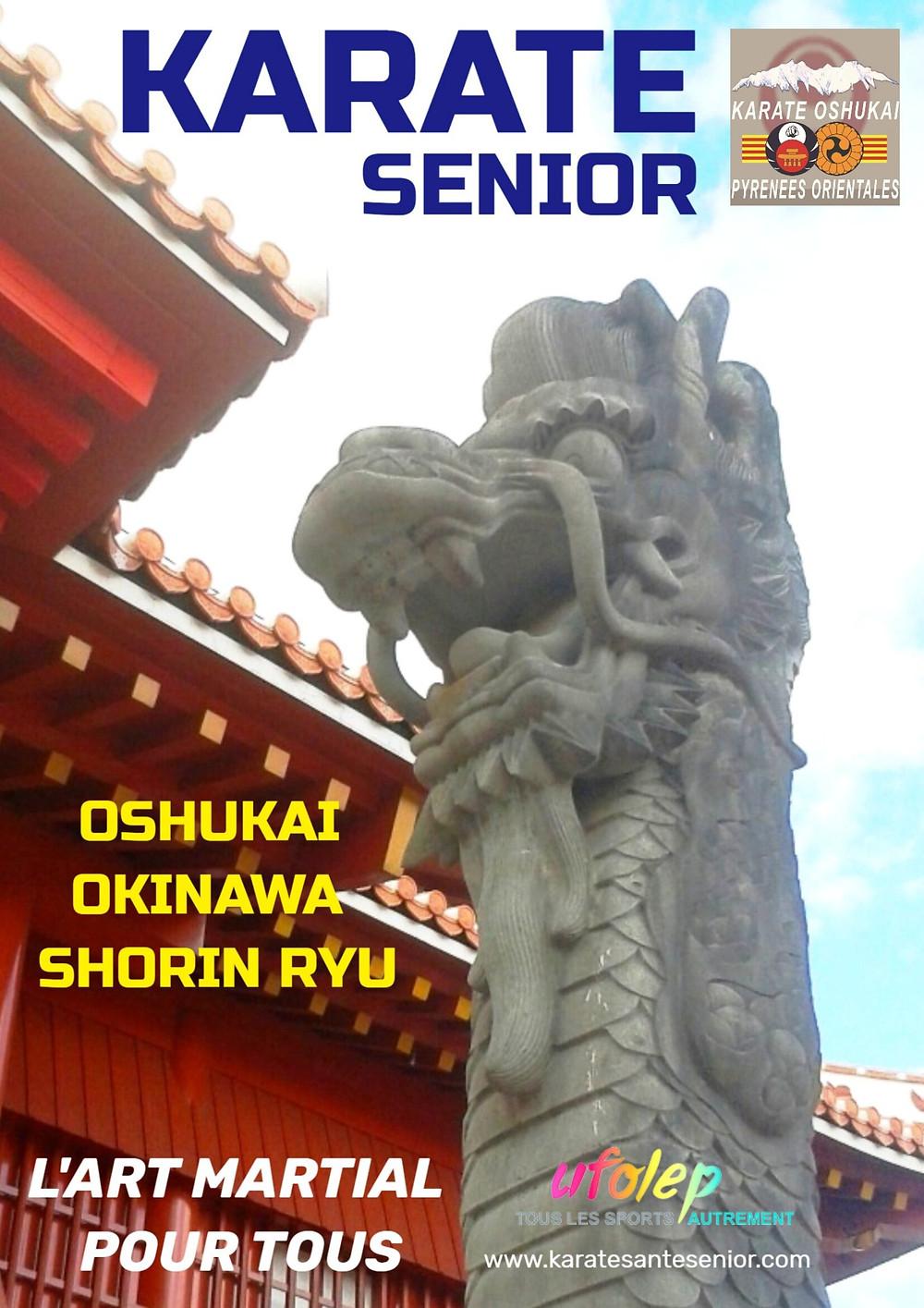 OKINAWA pays des centenaires et du karate