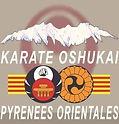 logo Karate OSHUKAI 66