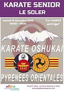 RDV Karate Senior Le Soler 15/12/2018