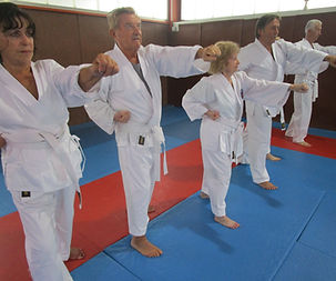 ma_première_leçon_karate_Senior.JPG