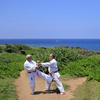 techniques traditionnelles du kata