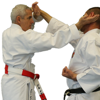 Gilles MEHARD Oshukai Karate Shorin Ryu