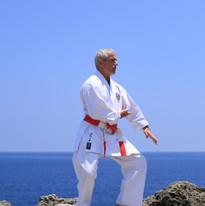MEHARD Gilles Oshukai Karate