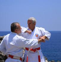 Oshukai Okinawa Karate