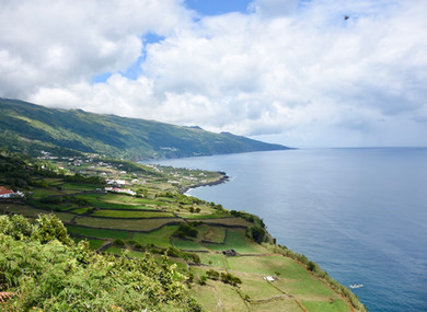 Pico: Where Whales, Wine, and a Volcano Await You