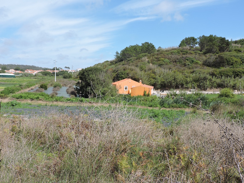 Rural living in Foz do Arelho