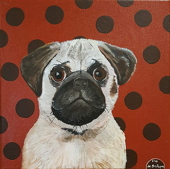 small portrait of a pug standing in front of a burgundy red background with large black dots