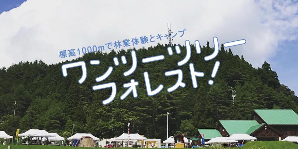 【8/19(日)】ワンツーツリーフォレスト2018 (1)