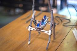 四足歩行ロボットをプログラミングで操作