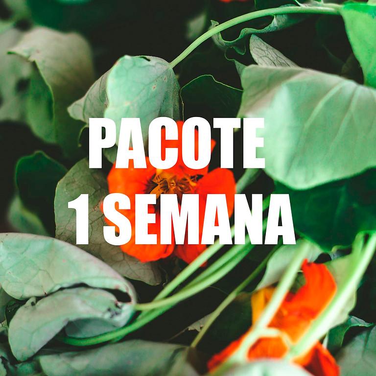 PACOTE 5 DIAS DE AULA