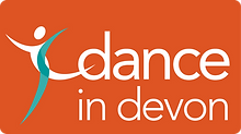 did-logo-web-orange.png