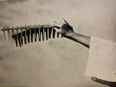 Armadillo Tintype