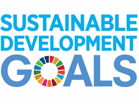 What evidence is there for an intersectoral approach to the SDGs?
