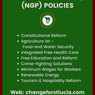 NGO POLICIES (GREEN FLYER).png