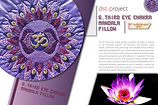 6_Third_Eye_Chakra_Mandala_Pillow_Patter