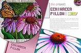 EchinaceaPillow_Pattern_cover.jpg