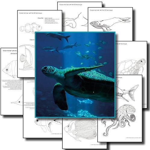 Ocean Animals / Simple Design