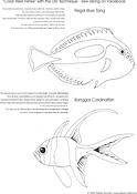 CoralReefFishes3.PNG