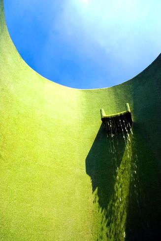 Green shower