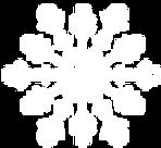 White Snowflake 3