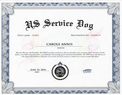 noble Service certificate