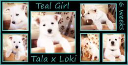teal girl 6 weeks.JPG