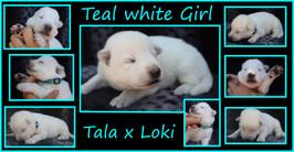 teal girl 1 wwk.JPG