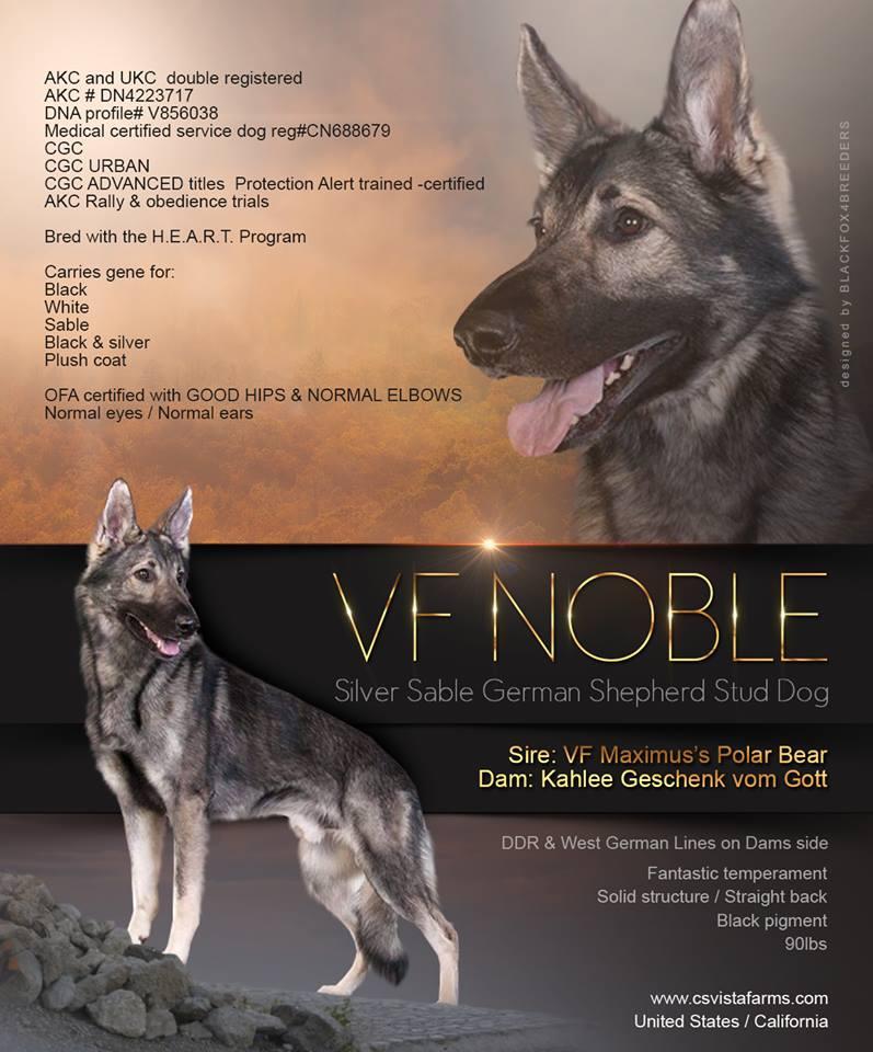 VF NOBLE