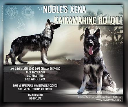 VF Noble's Xena.jpeg