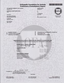 Ember OFA Certified Passing ED