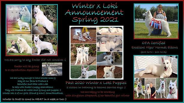 winter x loki announcement.jpg