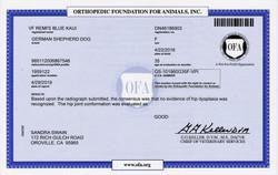 Kaui OFA Certification GOOD