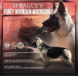 Sprague's Fancy Mountain Moonshine.jpeg
