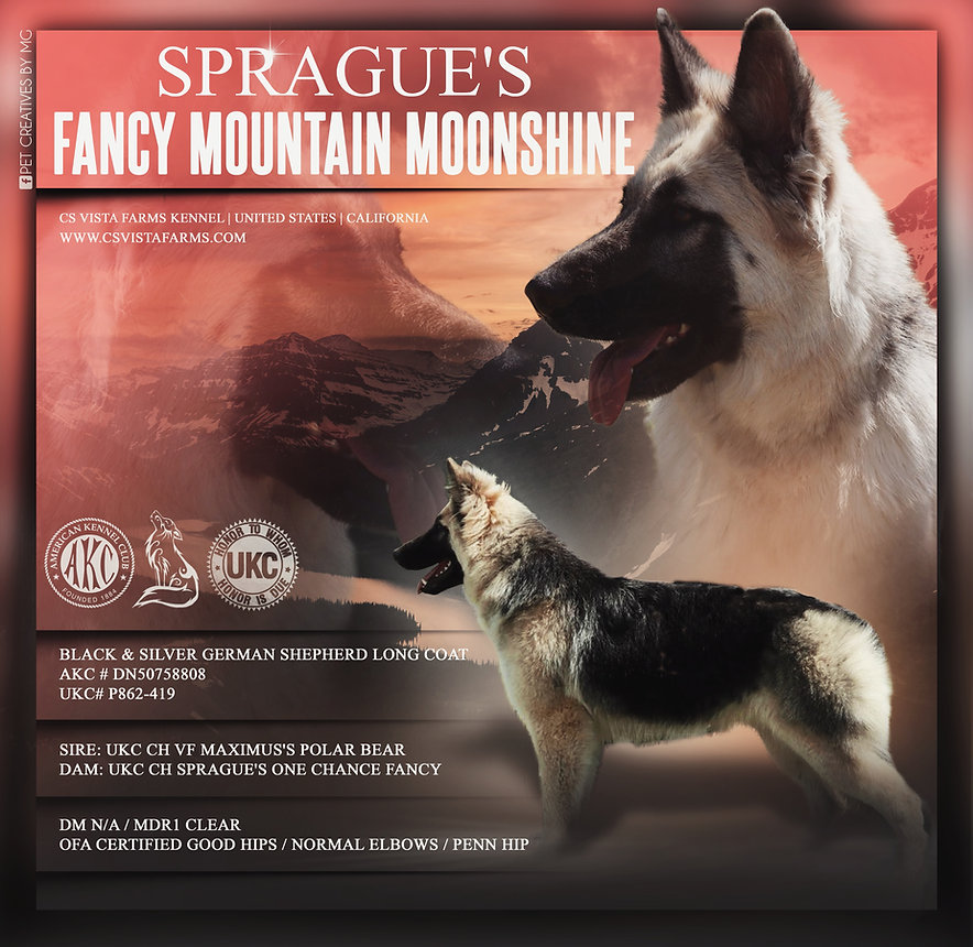 Sprague's Fancy Mountain Moonshine.jpeg