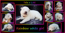 rainbow girl 1 week.JPG