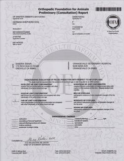 Ember OFA Certified Passing HD